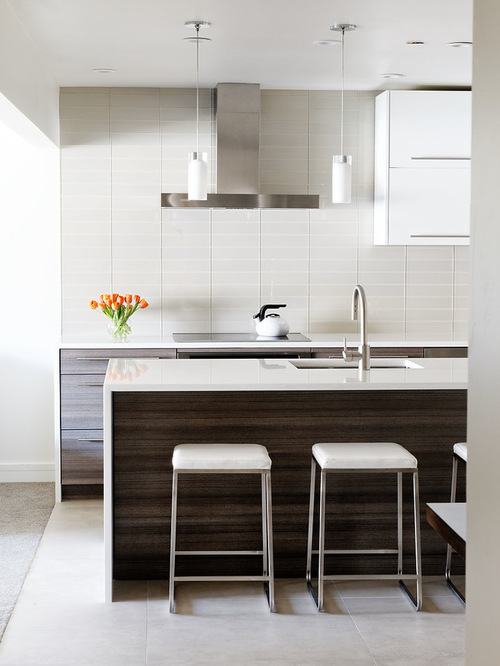 101165ca012e6327_9778-w500-h666-b0-p0--modern-kitchen